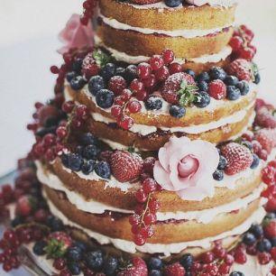 torta4
