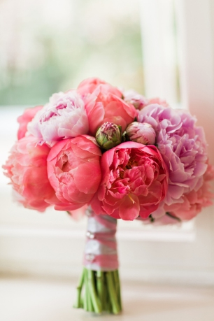 Peonies colorful
