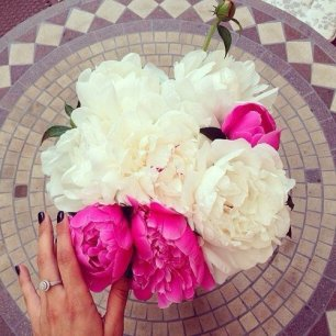 Peonies pink cream3