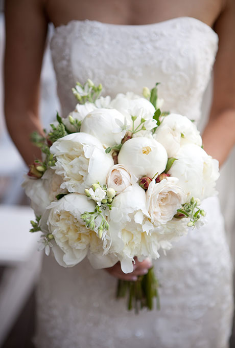 Peony-Bouquet-Refresh-Catherine-Hall-Studios
