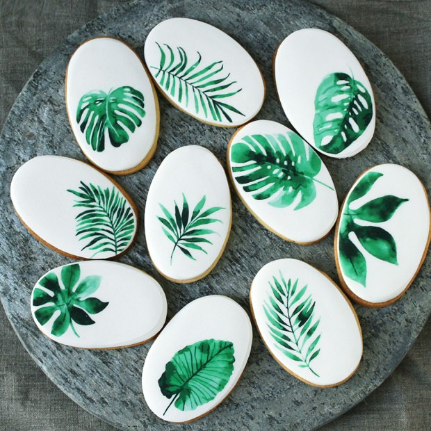 TropicalBiscuits