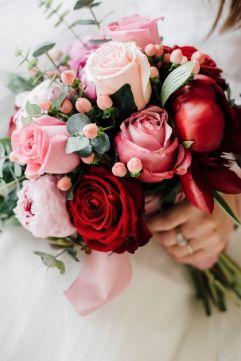 Rózsa Rose