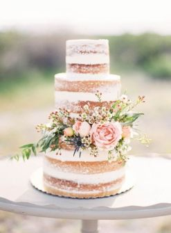 Healthy Wedding Cake_naked03